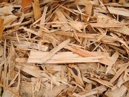 New ERP System for Biomass